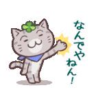 猫と四つ葉のクローバー 6(関西弁)(個別スタンプ:29)