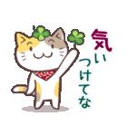 猫と四つ葉のクローバー 6(関西弁)(個別スタンプ:37)