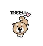 Japanese dog40(個別スタンプ:01)