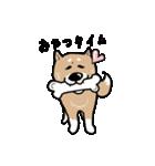 Japanese dog40(個別スタンプ:03)