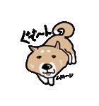Japanese dog40(個別スタンプ:04)