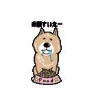 Japanese dog40(個別スタンプ:18)