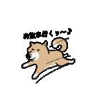 Japanese dog40(個別スタンプ:22)