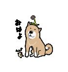 Japanese dog40(個別スタンプ:23)