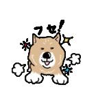 Japanese dog40(個別スタンプ:24)