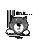 Japanese dog40(個別スタンプ:29)