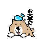 Japanese dog40(個別スタンプ:31)