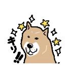 Japanese dog40(個別スタンプ:33)