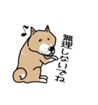 Japanese dog40(個別スタンプ:36)