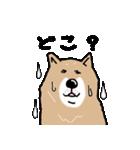 Japanese dog40(個別スタンプ:37)