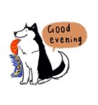 Every Day Dog Husky(個別スタンプ:03)