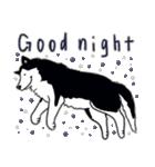 Every Day Dog Husky(個別スタンプ:04)