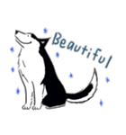 Every Day Dog Husky(個別スタンプ:05)
