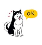 Every Day Dog Husky(個別スタンプ:07)