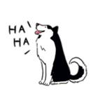 Every Day Dog Husky(個別スタンプ:09)