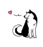 Every Day Dog Husky(個別スタンプ:12)