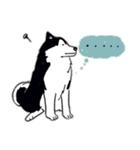 Every Day Dog Husky(個別スタンプ:16)