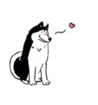 Every Day Dog Husky(個別スタンプ:21)