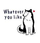 Every Day Dog Husky(個別スタンプ:22)