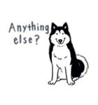 Every Day Dog Husky(個別スタンプ:27)