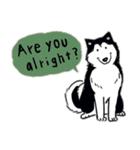 Every Day Dog Husky(個別スタンプ:28)