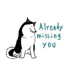 Every Day Dog Husky(個別スタンプ:29)