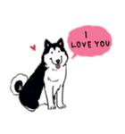 Every Day Dog Husky(個別スタンプ:32)