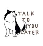 Every Day Dog Husky(個別スタンプ:33)