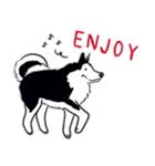Every Day Dog Husky(個別スタンプ:34)