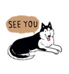 Every Day Dog Husky(個別スタンプ:37)