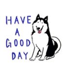 Every Day Dog Husky(個別スタンプ:38)