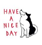 Every Day Dog Husky(個別スタンプ:39)