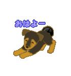 僕 ぽんた!(個別スタンプ:1)