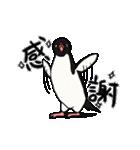 野良アデリー(動)(個別スタンプ:05)