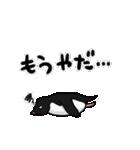 野良アデリー(動)(個別スタンプ:08)