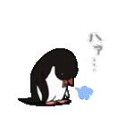 野良アデリー(動)(個別スタンプ:11)