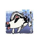 野良アデリー(動)(個別スタンプ:19)