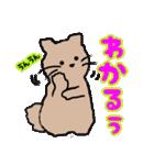 おだやかなネコのおかげ(個別スタンプ:16)