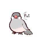 シルバー文鳥のすたんぷす(個別スタンプ:01)