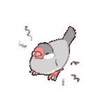 シルバー文鳥のすたんぷす(個別スタンプ:09)
