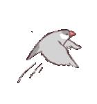 シルバー文鳥のすたんぷす(個別スタンプ:22)