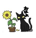 黒猫で会話(個別スタンプ:1)