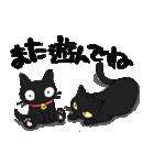 黒猫で会話(個別スタンプ:5)