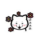 ほんわか白猫の日常(個別スタンプ:01)