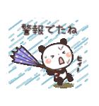 ぱんちゃんの大人かわいいスタンプ2 夏編(個別スタンプ:35)