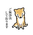 かしこまり犬~ダイバーシティ編~(個別スタンプ:01)