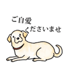 かしこまり犬~ダイバーシティ編~(個別スタンプ:07)