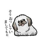 かしこまり犬~ダイバーシティ編~(個別スタンプ:09)