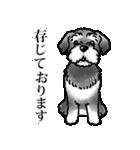 かしこまり犬~ダイバーシティ編~(個別スタンプ:12)