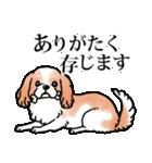 かしこまり犬~ダイバーシティ編~(個別スタンプ:14)